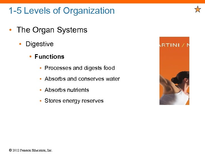 1 -5 Levels of Organization • The Organ Systems • Digestive • Functions •