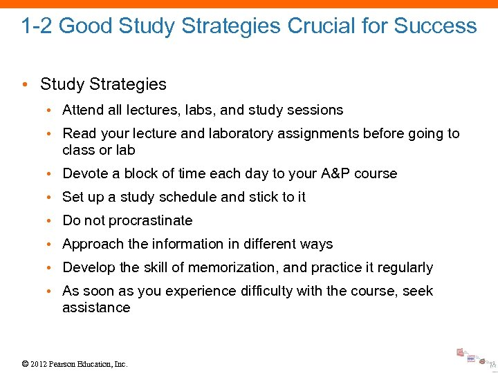 1 -2 Good Study Strategies Crucial for Success • Study Strategies • Attend all
