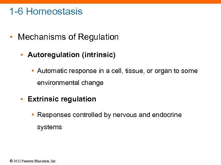 1 -6 Homeostasis • Mechanisms of Regulation • Autoregulation (intrinsic) • Automatic response in