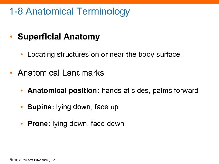 1 -8 Anatomical Terminology • Superficial Anatomy • Locating structures on or near the