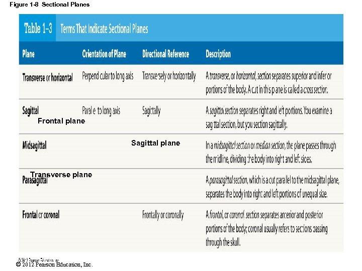 Figure 1 -8 Sectional Planes Frontal plane Sagittal plane Transverse plane © 2012 Pearson