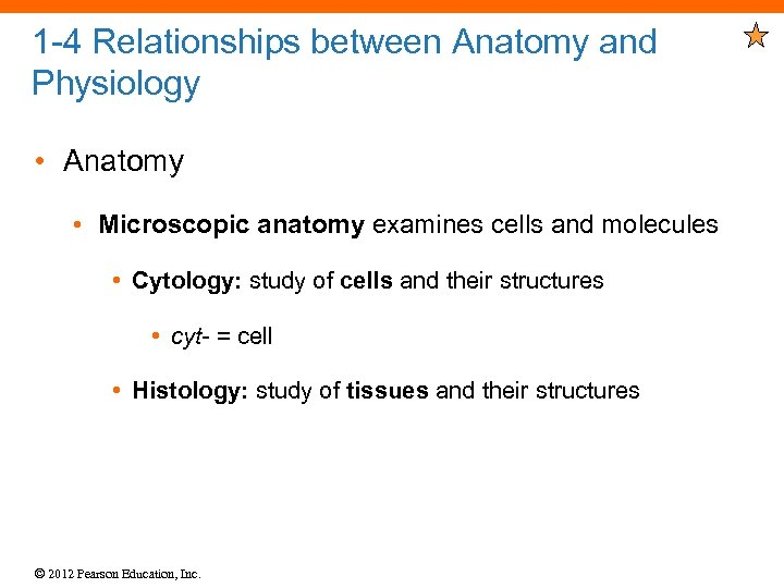 1 -4 Relationships between Anatomy and Physiology • Anatomy • Microscopic anatomy examines cells