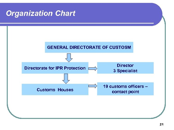 Organization Chart GENERAL DIRECTORATE OF CUSTOSM Directorate for IPR Protection Director 3 Specialist Customs