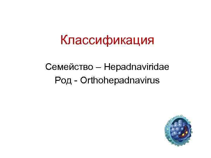 Классификация Семейство – Hepadnaviridae Род - Orthohepadnavirus