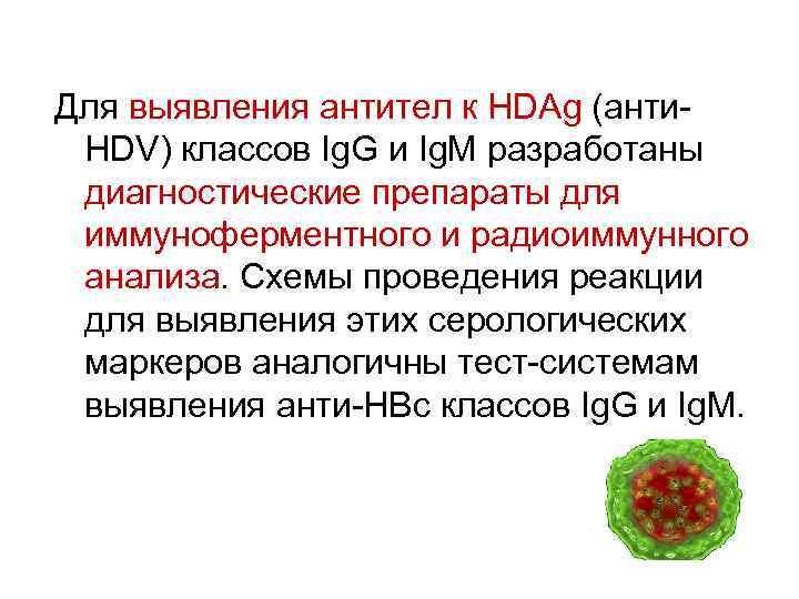Для выявления антител к HDAg (анти. HDV) классов Ig. G и Ig. M разработаны