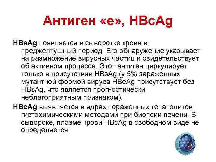 Антиген «e» , HBc. Ag HBe. Ag появляется в сыворотке крови в преджелтушный период.