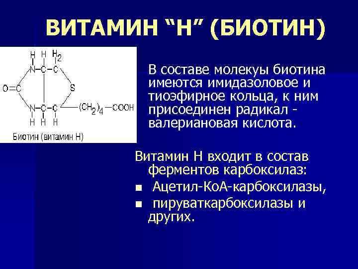 """ВИТАМИН """"Н"""" (БИОТИН) В составе молекуы биотина имеются имидазоловое и тиоэфирное кольца, к ним"""