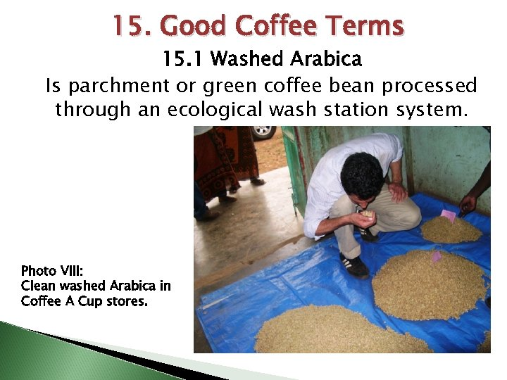 15. Good Coffee Terms 15. 1 Washed Arabica Is parchment or green coffee bean