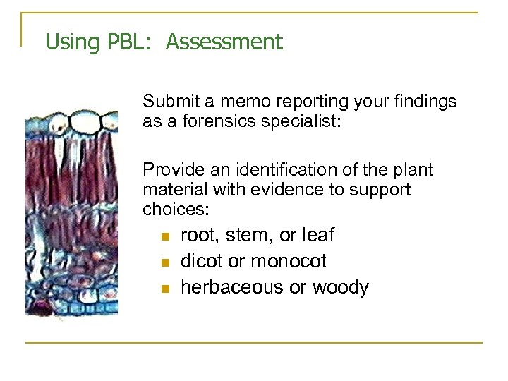Using PBL: Assessment Submit a memo reporting your findings as a forensics specialist: Provide