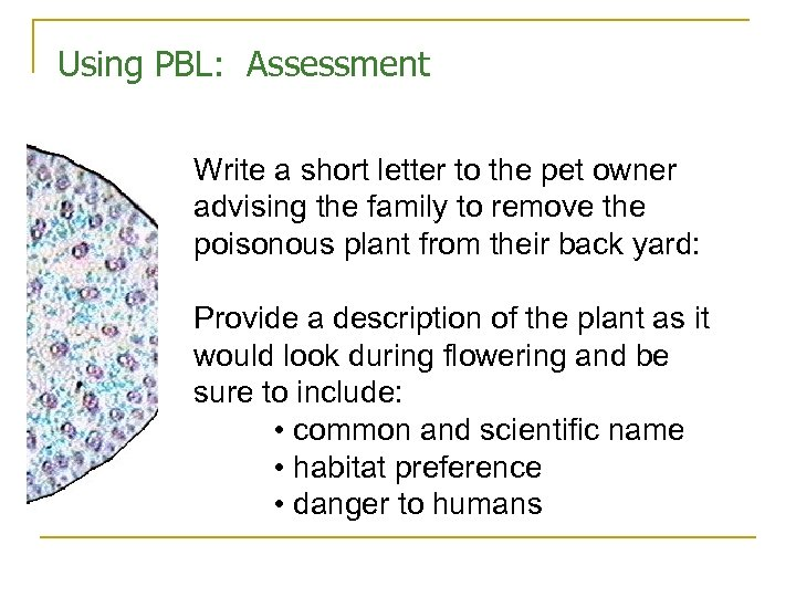 Using PBL: Assessment Write a short letter to the pet owner advising the family