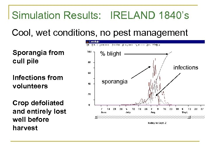 Simulation Results: IRELAND 1840's Cool, wet conditions, no pest management Sporangia from cull pile