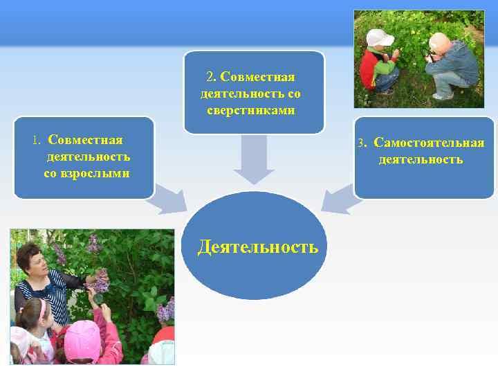 2. Совместная деятельность со сверстниками 1. Совместная 3. Самостоятельная деятельность со взрослыми деятельность Деятельность