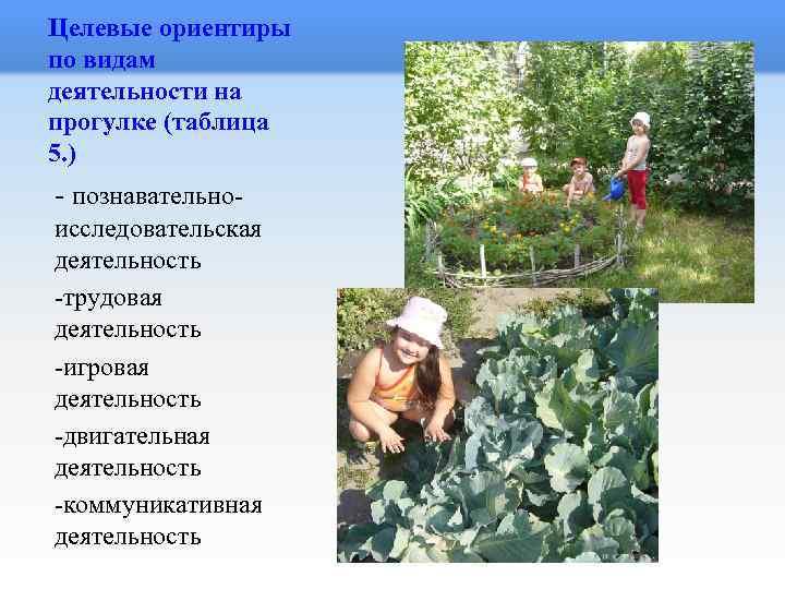 Целевые ориентиры по видам деятельности на прогулке (таблица 5. ) - познавательноисследовательская деятельность -трудовая