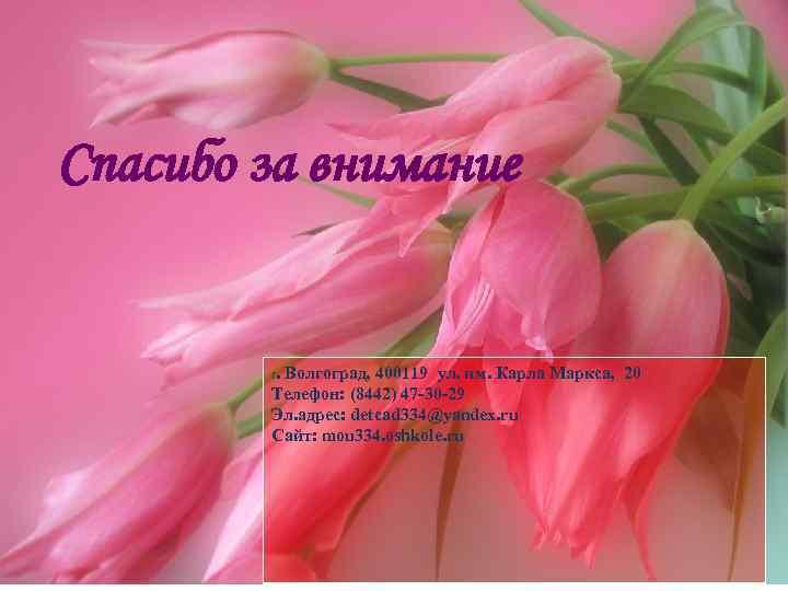 Спасибо за внимание г. Волгоград, 400119 ул. им. Карла Маркса, 20 Телефон: (8442) 47