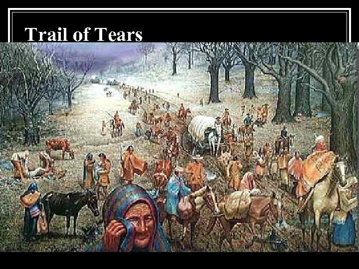 a study of the trail of tears in america Trail of tears by dee brown one of the most unhappy chapters in american history was the way whites treated the indians american  literature study guides.
