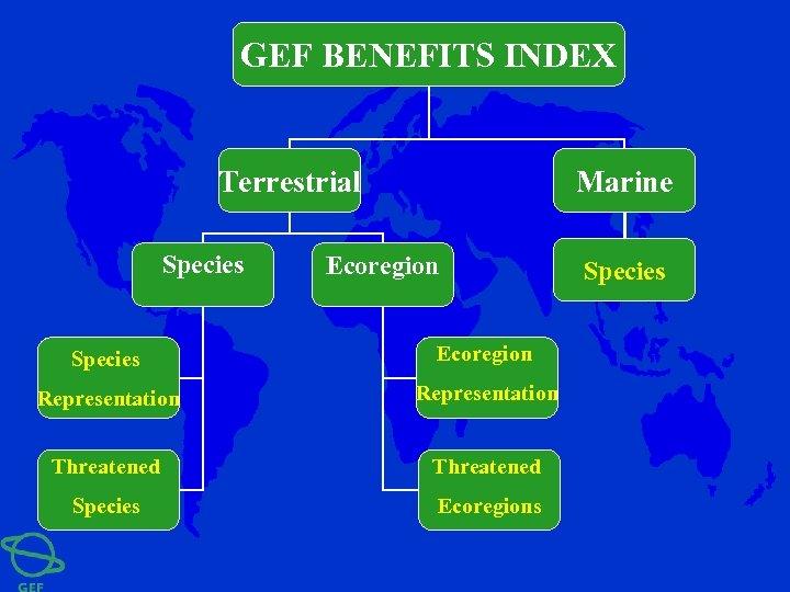 GEF BENEFITS INDEX Terrestrial Species Marine Ecoregion Species Ecoregion Representation Threatened Species Ecoregions Species