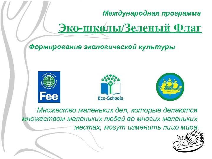 Международная программа Эко-школы/Зеленый Флаг Формирование экологической культуры Множество маленьких дел, которые делаются множеством маленьких