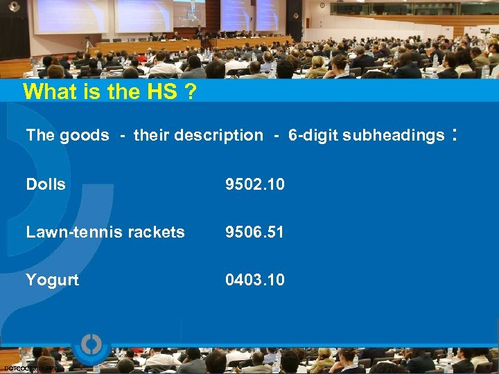 What is the HS ? The goods - their description - 6 -digit subheadings