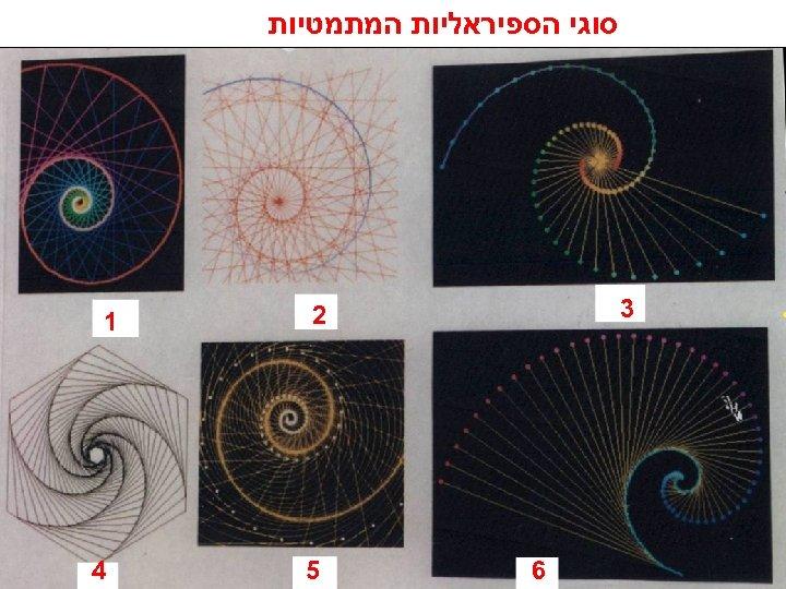 סוגי הספיראליות המתמטיות 3 2 6 5 1 4