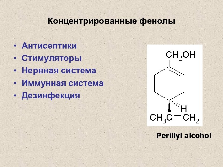 Концентрированные фенолы • • • Антисептики Стимуляторы Нервная система Иммунная система Дезинфекция Perillyl alcohol