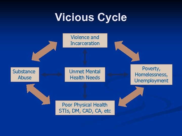 Vicious Cycle Violence and Incarceration Substance Abuse Unmet Mental Health Needs Poor Physical Health