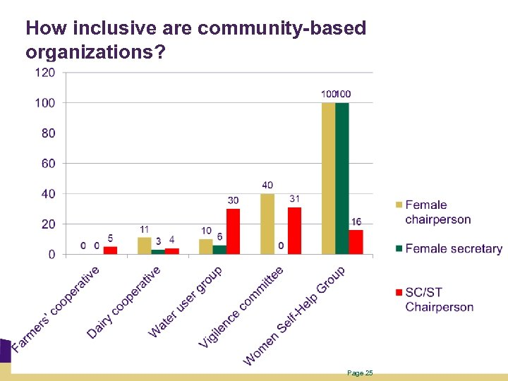 How inclusive are community-based organizations? Page 25