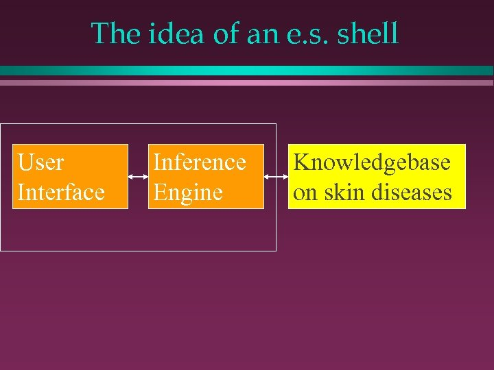 The idea of an e. s. shell User Interface Inference Engine Knowledgebase on skin