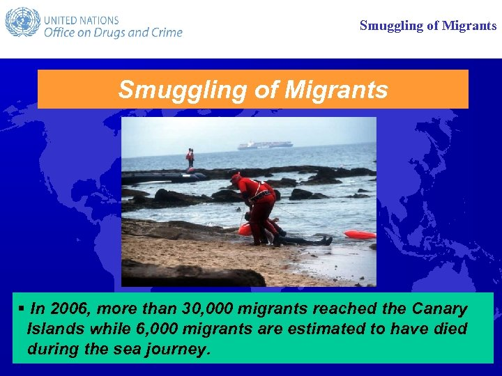 Smuggling of Migrants § In 2006, more than 30, 000 migrants reached the Canary