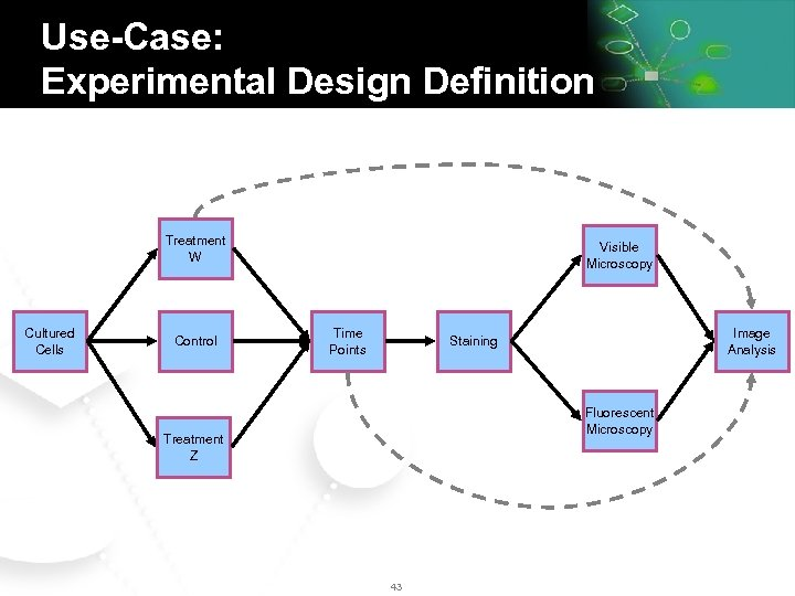 Use-Case: Experimental Design Definition Treatment W Cultured Cells Control Visible Microscopy Time Points Image
