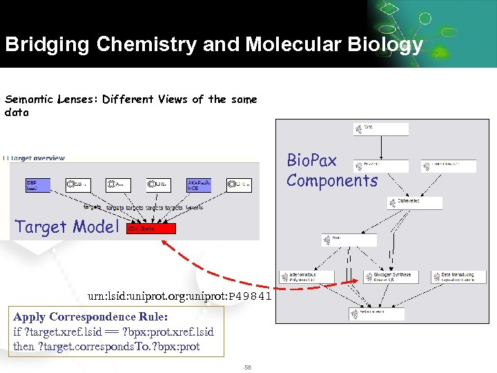 Bridging Chemistry and Molecular Biology Semantic Lenses: Different Views of the same data Bio.