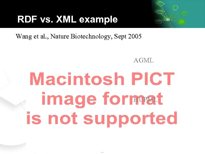 RDF vs. XML example Wang et al. , Nature Biotechnology, Sept 2005 AGML HUPML