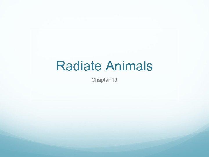 Radiate Animals Chapter 13