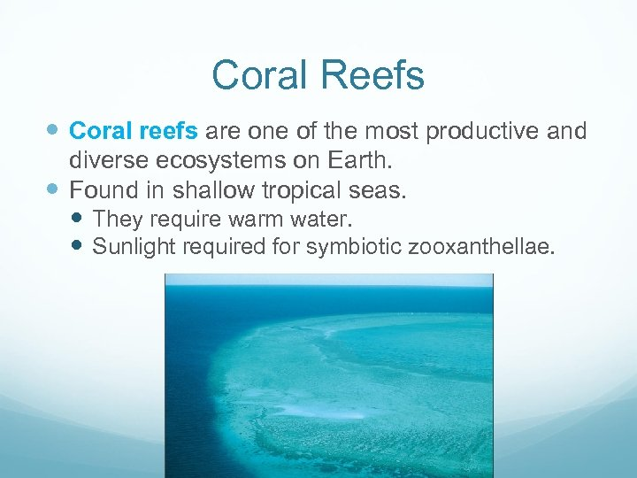 Coral Reefs Coral reefs are one of the most productive and diverse ecosystems on
