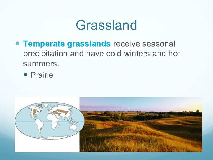 Grassland Temperate grasslands receive seasonal precipitation and have cold winters and hot summers. Prairie