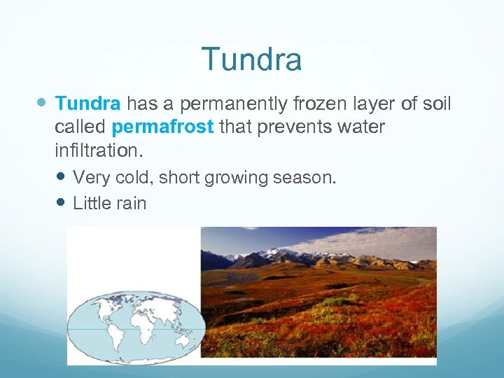 Tundra has a permanently frozen layer of soil called permafrost that prevents water infiltration.