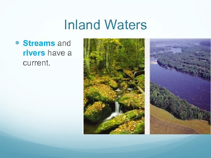 Inland Waters STREAMS AND RIVERS Streams and rivers have a current.