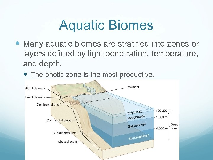 Aquatic Biomes Many aquatic biomes are stratified into zones or layers defined by light