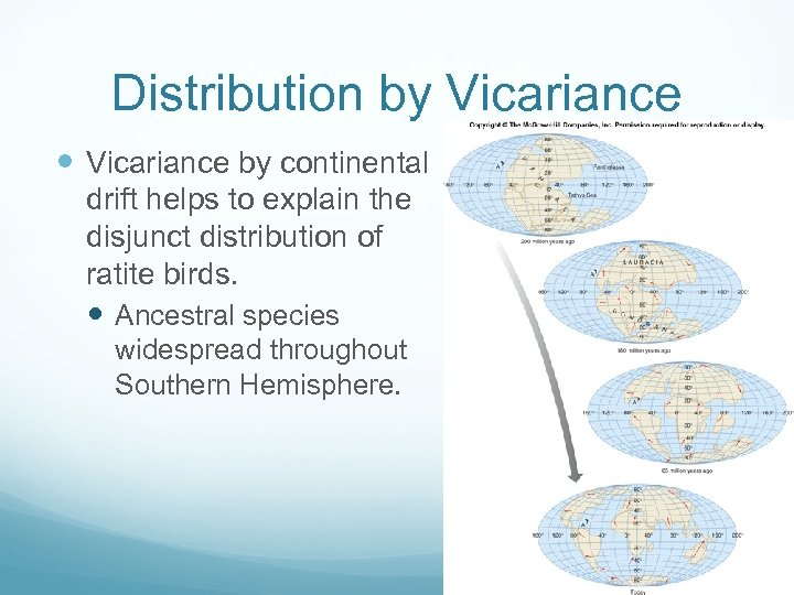 Distribution by Vicariance by continental drift helps to explain the disjunct distribution of ratite