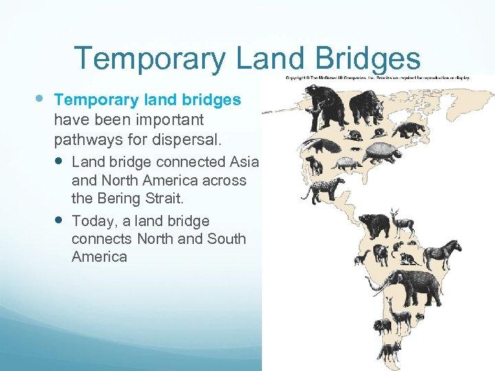 Temporary Land Bridges Temporary land bridges have been important pathways for dispersal. Land bridge