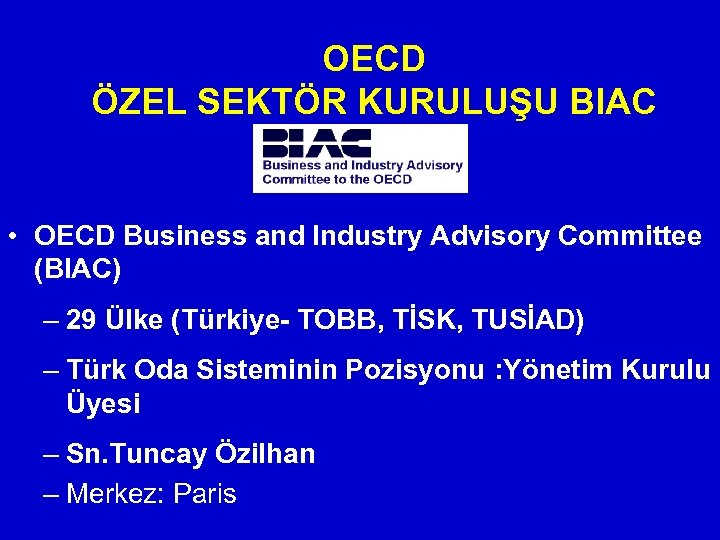 OECD ÖZEL SEKTÖR KURULUŞU BIAC • OECD Business and Industry Advisory Committee (BIAC) –