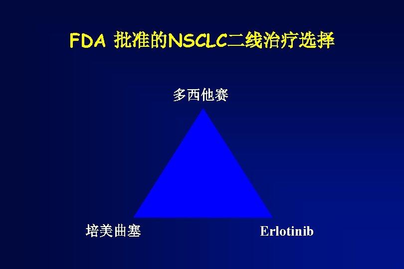 FDA 批准的NSCLC二线治疗选择 多西他赛 培美曲塞 Erlotinib