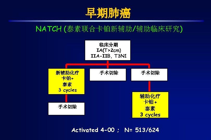 早期肺癌 NATCH (泰素联合卡铂新辅助/辅助临床研究) 临床分期 IA(T>2 cm) IIA-IIB, T 3 N 1 新辅助化疗 卡铂+ 泰素