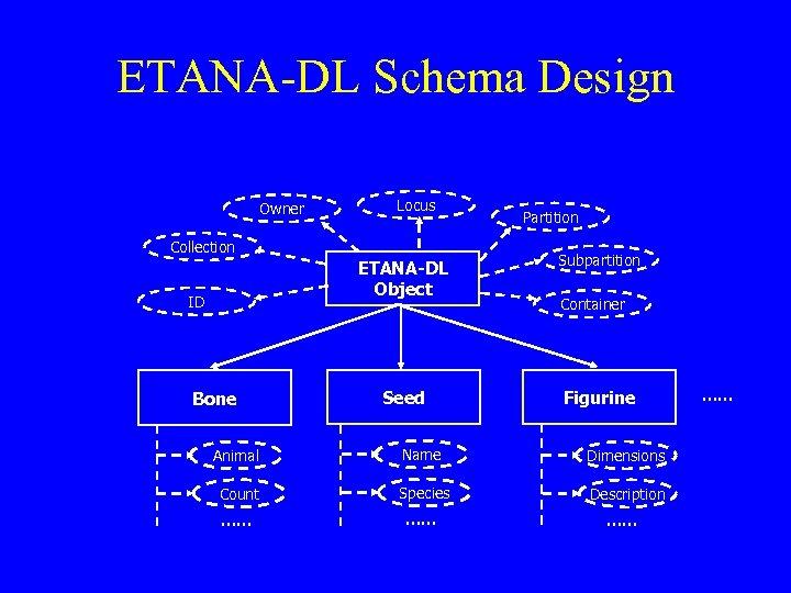 ETANA-DL Schema Design Owner Locus Collection Partition ETANA-DL Object ID Bone Subpartition Seed Figurine