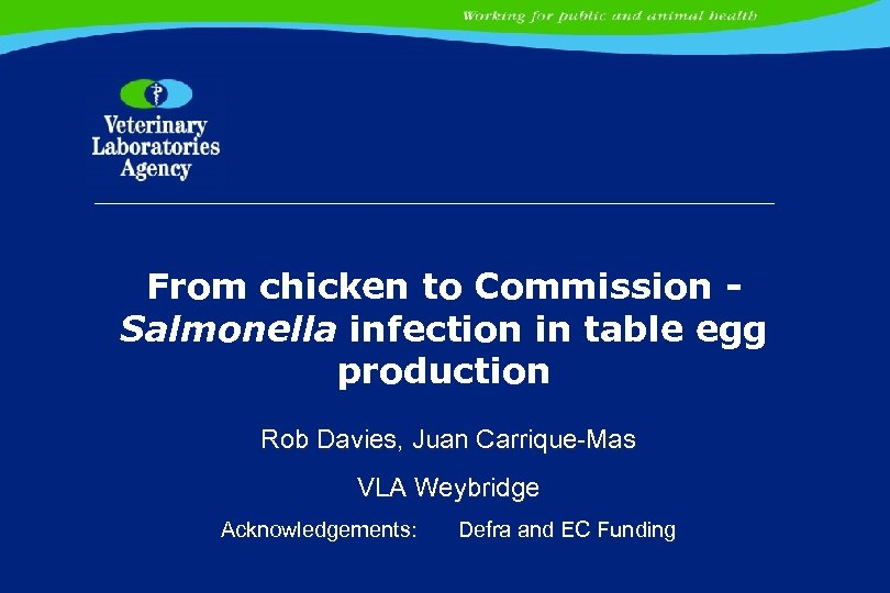 From chicken to Commission Salmonella infection in table egg production Rob Davies, Juan Carrique-Mas