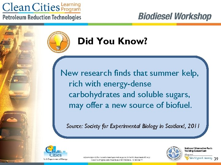 Did You Know? New research finds that summer kelp, rich with energy-dense carbohydrates and