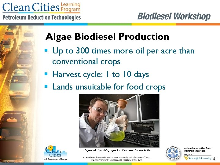 Algae Biodiesel Production § Up to 300 times more oil per acre than conventional