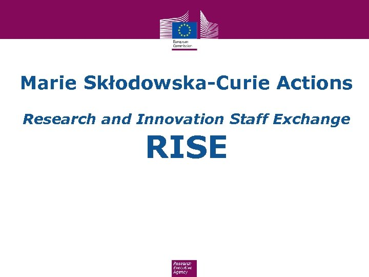 Marie Skłodowska-Curie Actions Research and Innovation Staff Exchange RISE
