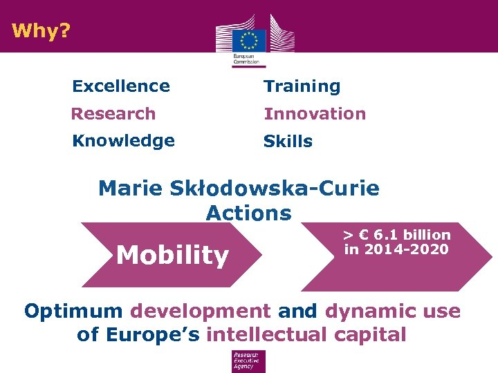 Why? Excellence Training Research Innovation Knowledge Skills Marie Skłodowska-Curie Actions Mobility > € 6.