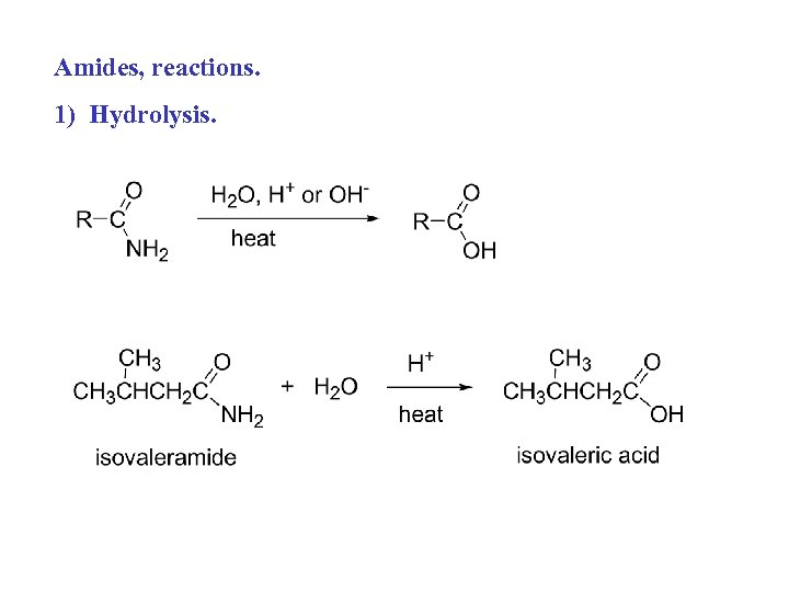 Amides, reactions. 1) Hydrolysis.