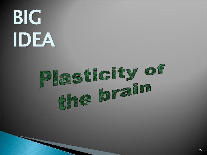 BIG IDEA 25